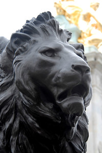 Lion at Buckingham Palace