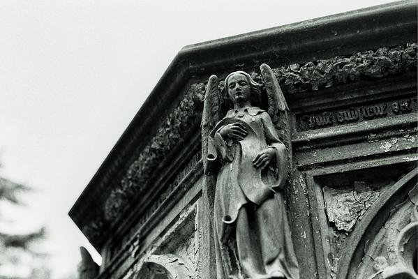 West Norwood Cemetery - London September 2014
