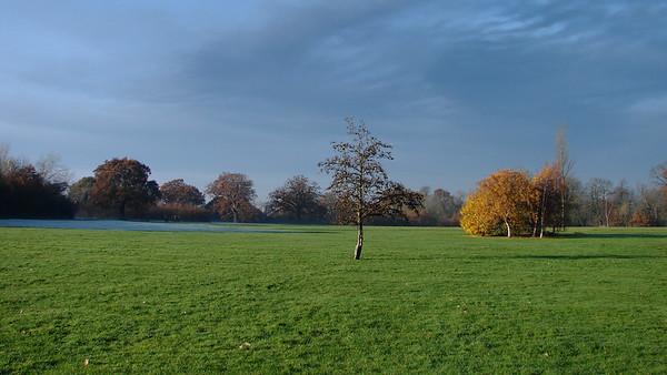 Cannon Hill Common in Winter - 2005