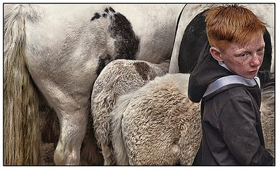 Horseboy Freckles
