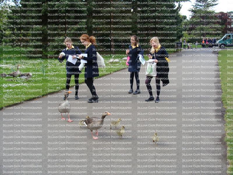 School girls feeding birds