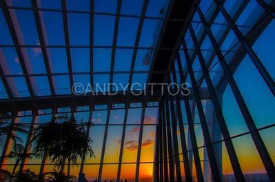 Sky Garden Sunset