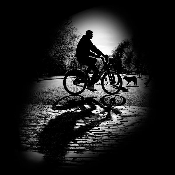 Biking through Kensington Gardens. 2017.