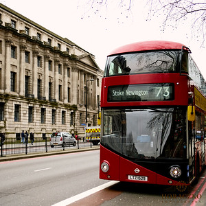 London-Local-photographer- EWA10288