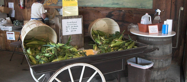 Sweet Corn spills onto a homemade cart at a Londonderry Farmstand