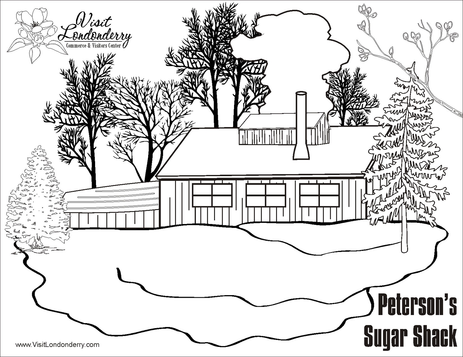 Maple Syrup And Coloring In Londonderry News