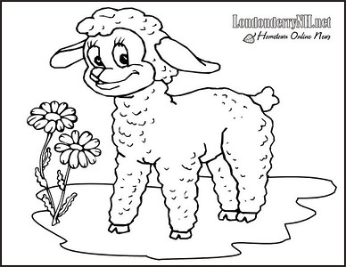 Little_Lamb02