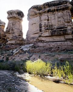 National Park 020