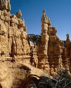 National Park 039