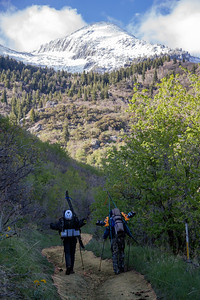 Schoolhouse Springs Trail / Bighorn Peak