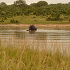 Elephant bathing- Kruger