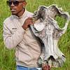Hippo skull Isimangaliso wetland park