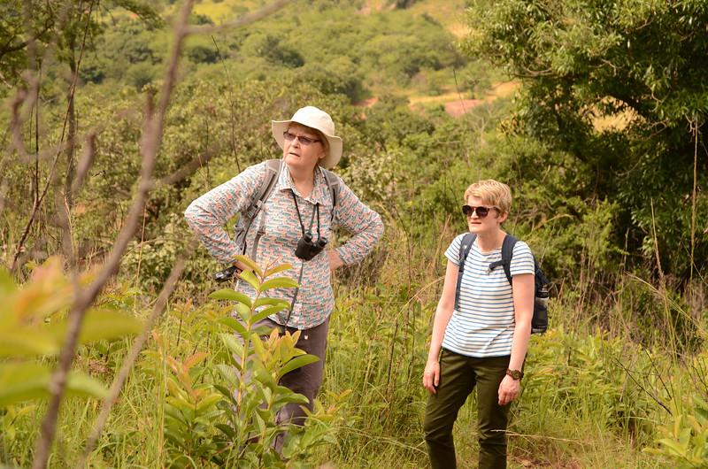 walking at at Mlilwane