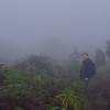 walking in the rain, Drakensberg