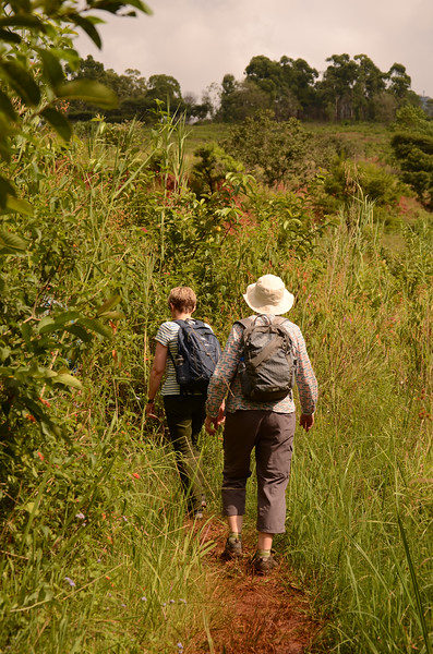 walking at at Mlilwane Wildlife Sanctuary, beneath the Nyonyane Mountains