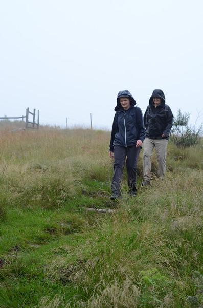 walking in the rain, drakensberg