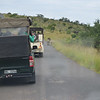 two male lions on the roads at at Hluhluwe-Umfolozi Game Reserve