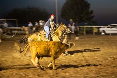 Lonestar Equestrian Center-Coolidge AZ