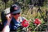 Hiking in the Blue Mountains of NSW. Admiring Waratah blosoms.