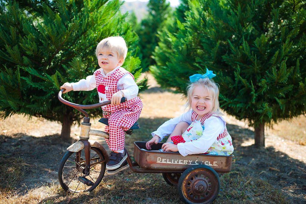 Long Family: Christmas Mini Session