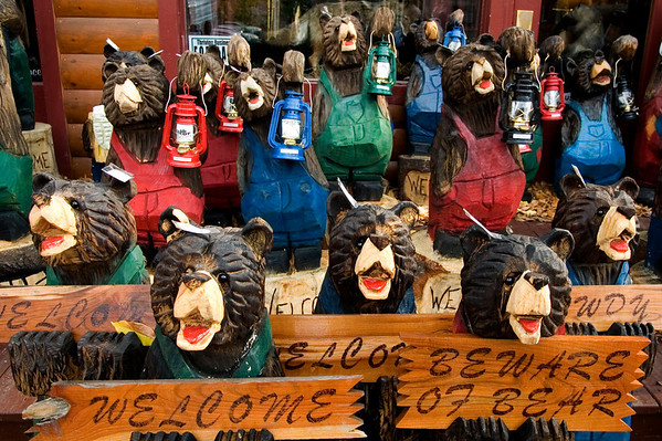 These bears are chainsaw carved and an Adirondack specialty.  Can you hear them sing ?