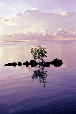 After sunset, Isla Morada, the Florida Keys