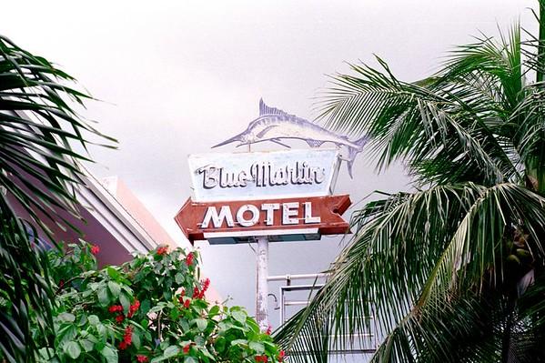 Famous Blue Marlin Motel, Key West, FL