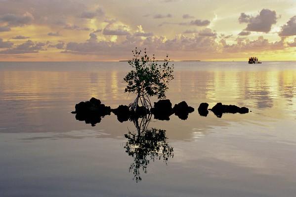 A beautiful sunset over calm waters in Isla Morada, FL