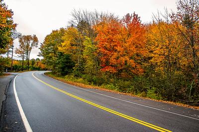 Scarborough Fall Foliage 002