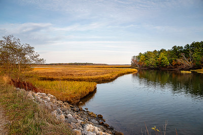Scarborough Marsh 006