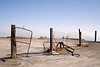 Gate to Nowhere at Bombay Beach.