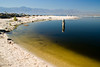 Sunlight highlights the strange colors of the Salton Sea.