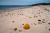 Meschutt Beach #001, Hampton Bays, NY