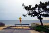 Great South Bay #001, Islip, NY