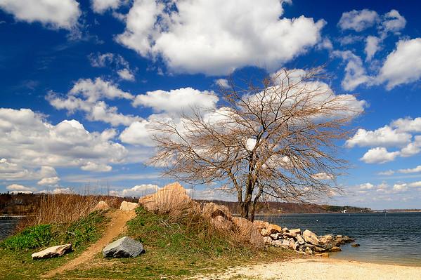 Theodore Roosevelt Memorial Park, Oyster Bay, NY