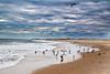 Ponquogue Beach #001, Hampton Bays, NY