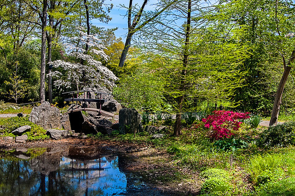 Spring scene at Clark Botanic Garden, Albertson, NY