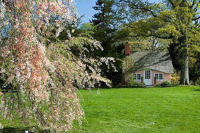 Spring at Planting Fields Arboretum in Oyster Bay, NY