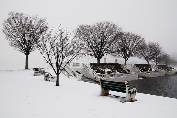 Trees stand stark against a foggy sky and wintry foreground in Argyle Park, Babylon, NY.