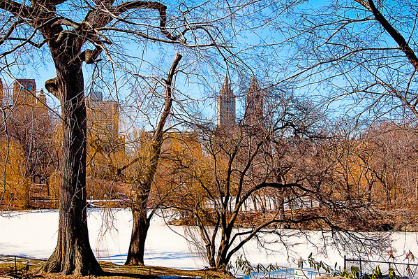 The famous San Remo Building as seen through Central Park branches on a wintry Sunday afternoon