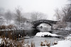 Central Park's Gapstow Bridge during a February Blizzard