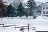 Snowstorm, December 26, 2010 4pm