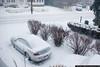 Snowstorm, December 26, 2010 3:50pm