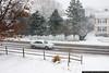 Snowstorm, December 26, 2010 1:30pm