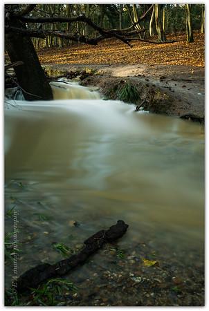 Hillyfields park Enfield.november 2014