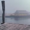 Fog V