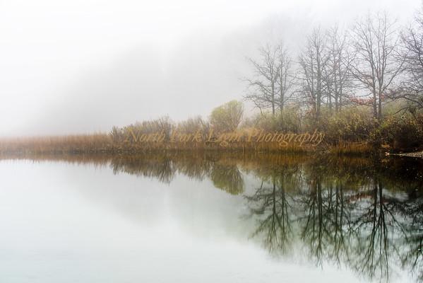 Fog Reflection