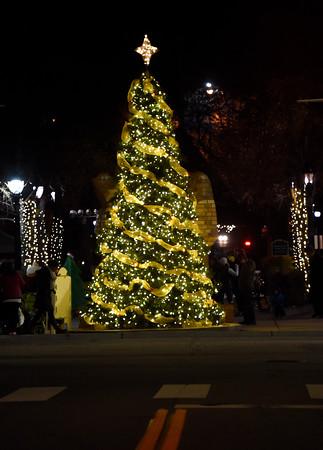 Longmont Tree Lighting
