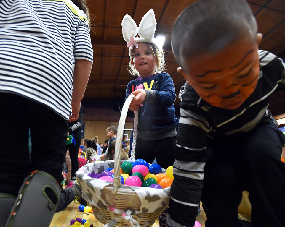 "Marlo Epstein, 3 1/2, carries her basket while gathering eggs and candy during the Easter Egg Hunt at the Longmont Memorial Center on Saturday sponsored by the White Fields Church.<br /> More photos:  <a href=""http://www.BoCoPreps.com"">http://www.BoCoPreps.com</a><br /> David R. Jennings/Staff Photographer<br /> March 26, 2016"
