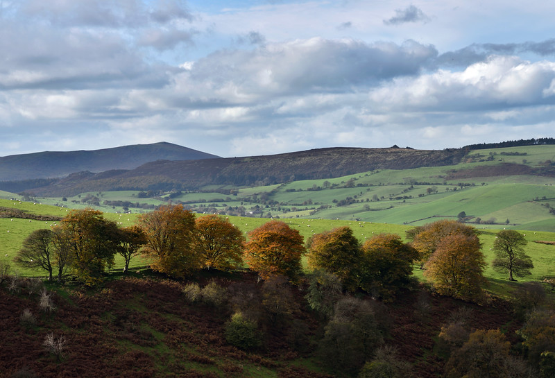 A view from near the Longmynd.